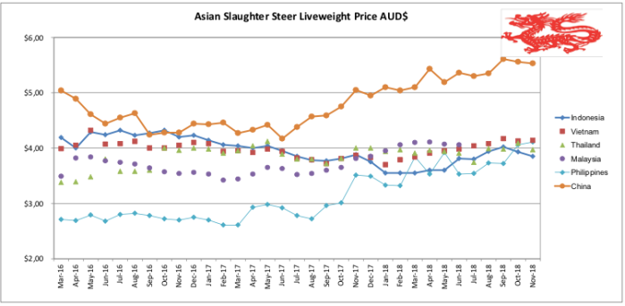 Asian Slaughter Steer Nov 2018