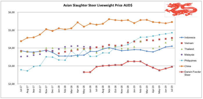 Asian Slaughter Steer July 2019