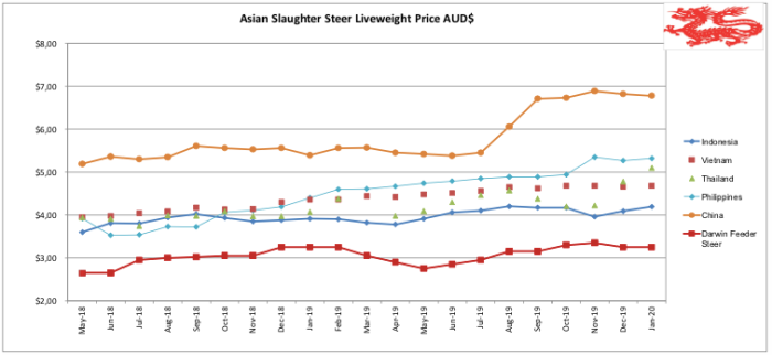 Asian Slaughter Steer_Jan 2020