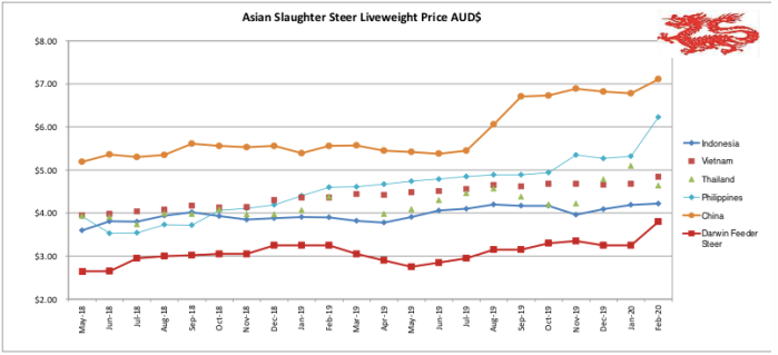 Asian Slaughter Steer Feb 2020