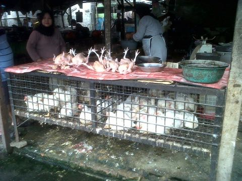 Photo1_Wet Market in Lampung