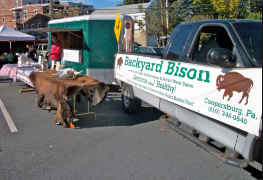 Photo8_Bison Meat