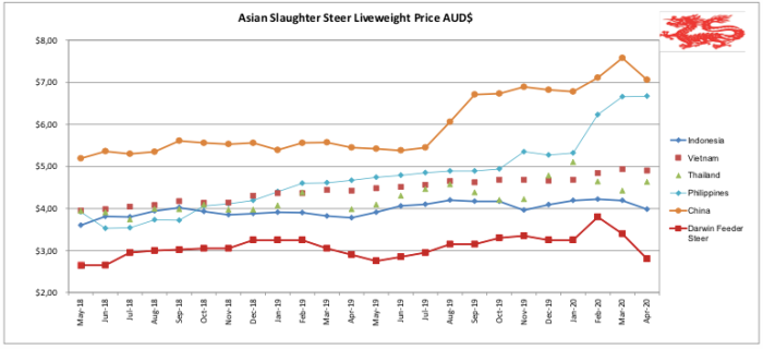 Asian Slaughter Steer_Pic1