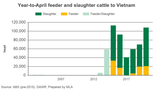 feeder-and-slaughter-catle-in-vietnam_pic5.png?w=522