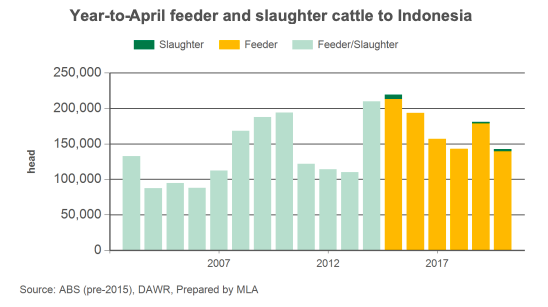 feeder-and-slaughter-cattle_pic3.png?w=548